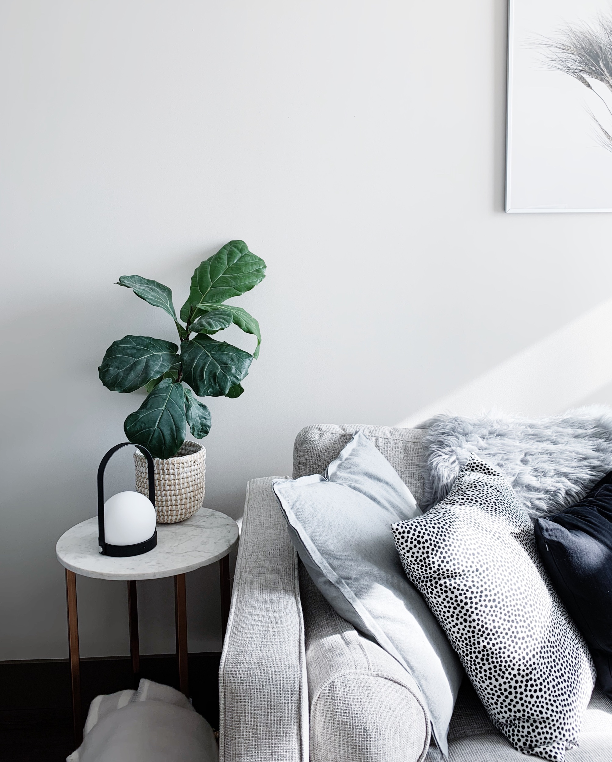 Lamp  |  Pillows  |  Planter  |  Sofa  |  Features gifted products