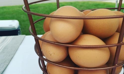 TRFM eggs.JPG