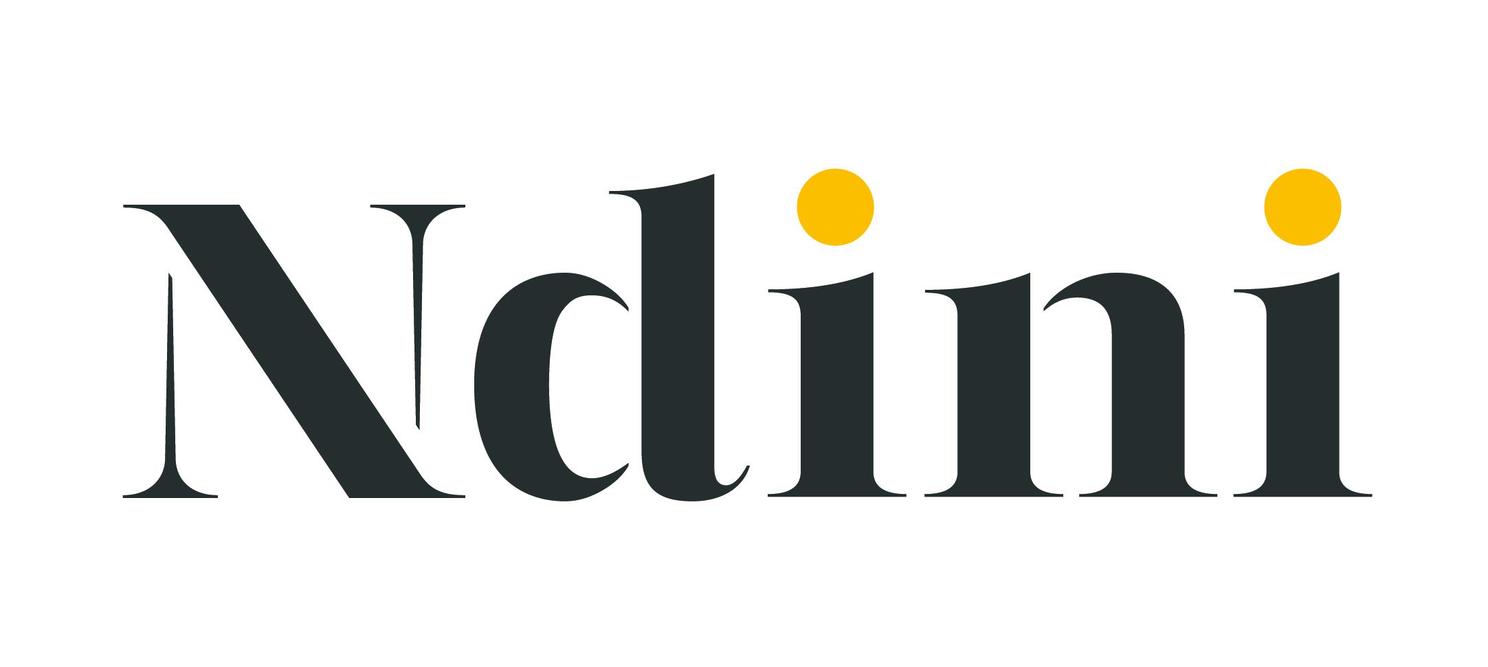 NDINI Final Logo_Ndini Logo - On White.jpg