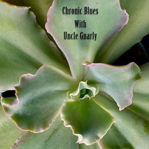 Uncle Gnarly Chronic Blues Wednesday, 23.00-00.00 (Monthly)   Once a month, ya boy Uncle Gnarly is taking you on a cruise through lush landscaped with introspective rhythms and dreamy melodies mean to relax the soul. Light up and look inwards with Chronic Blues.