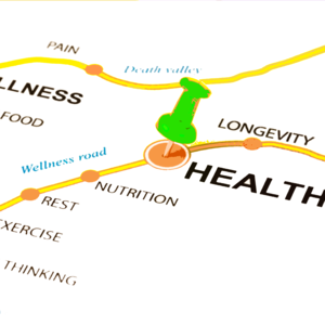 Local Wellness Resources
