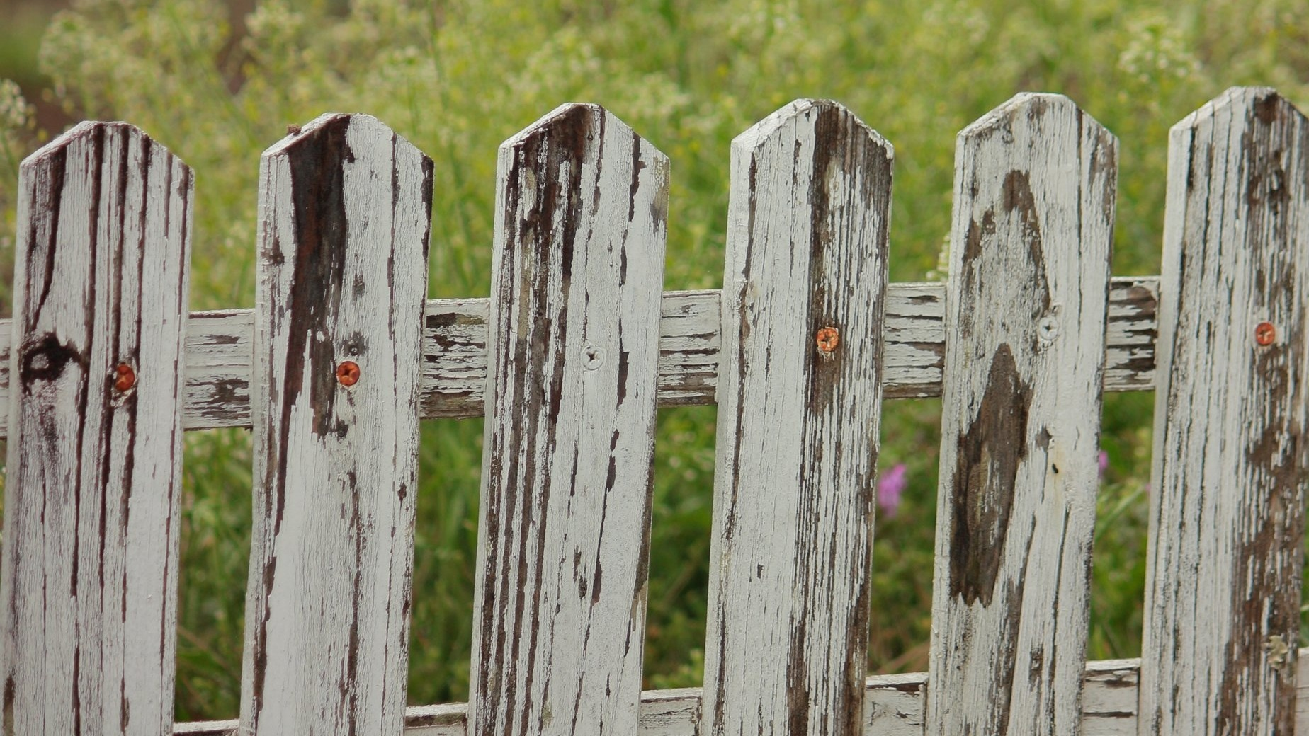 "What are you ""sitting on a fence"" about? -"