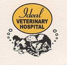 IDEAL-LOGO.jpeg