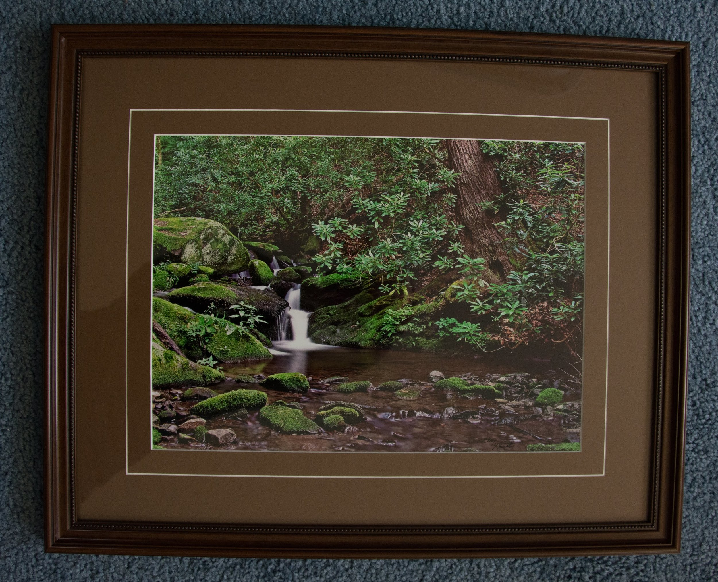 Woodland Waterfall Photo by Clay Thurston