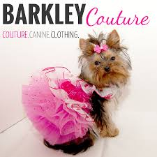 barkley couture.jpg