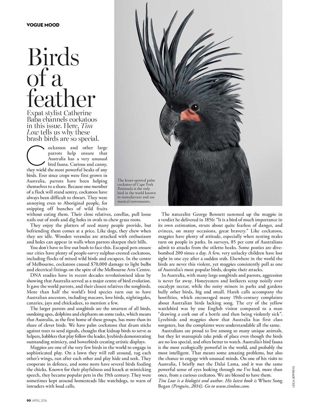 LJ_Vogue_0416_1.jpg