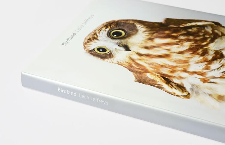 LJ_Birdland_02-750x484.jpg
