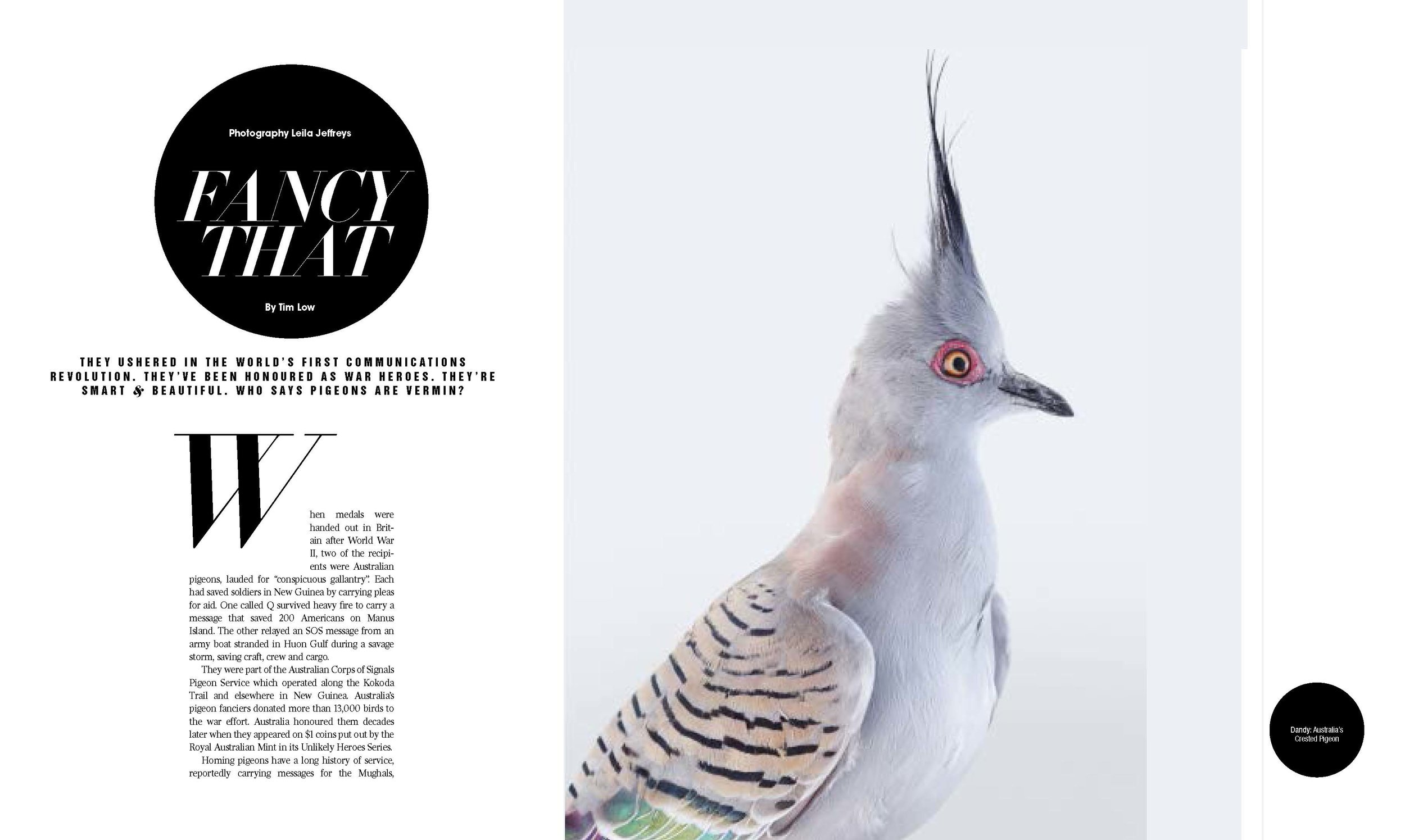West Australian Magazine inside_Page_1.jpg