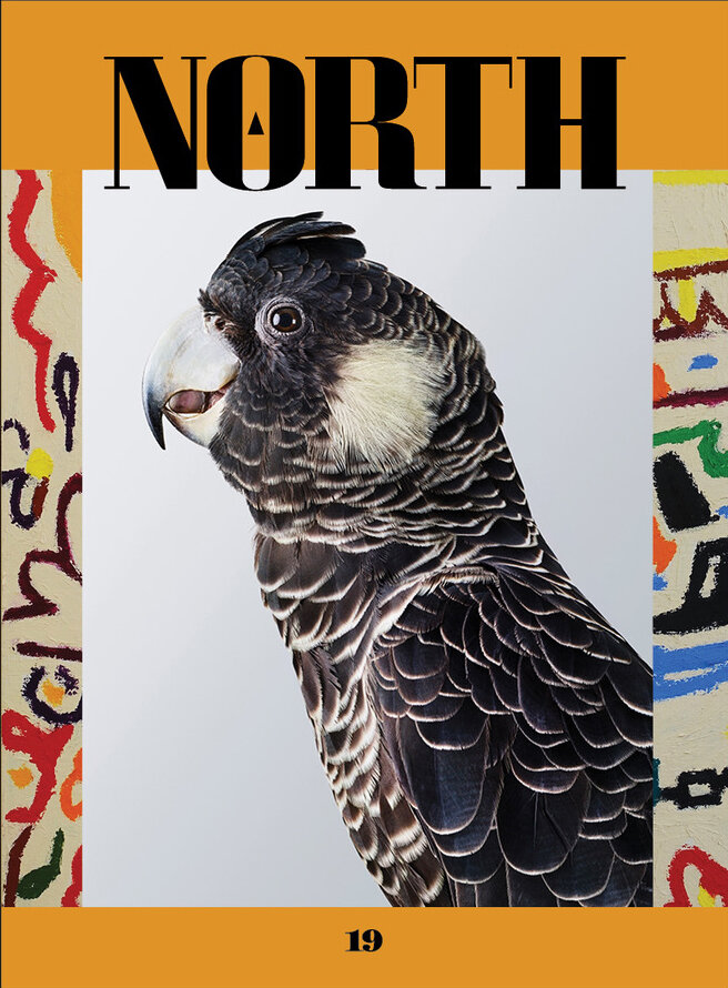 The North_Leila Jeffreys cover.jpeg