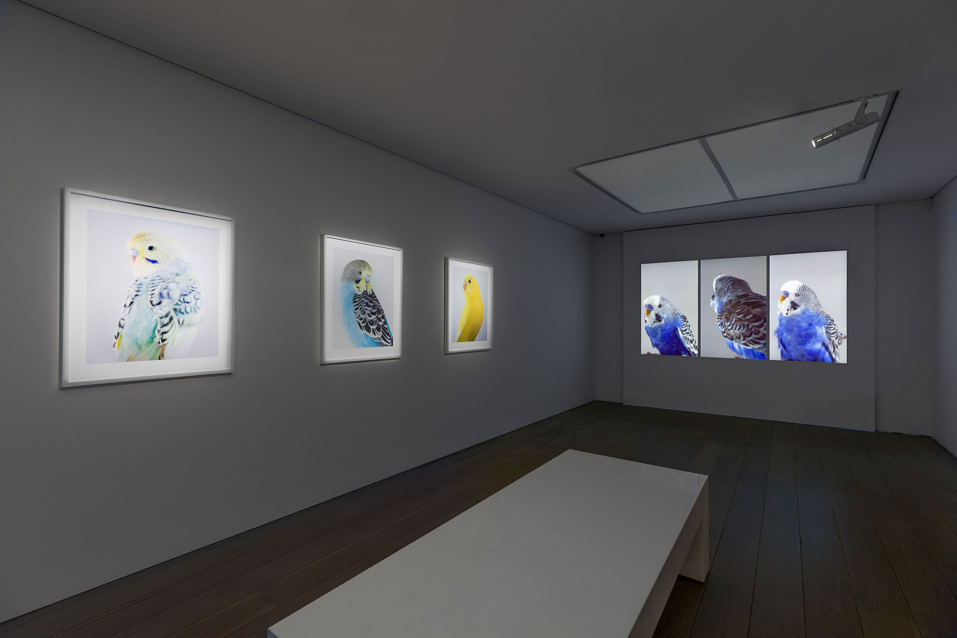 High Society OLSEN Gallery 2019