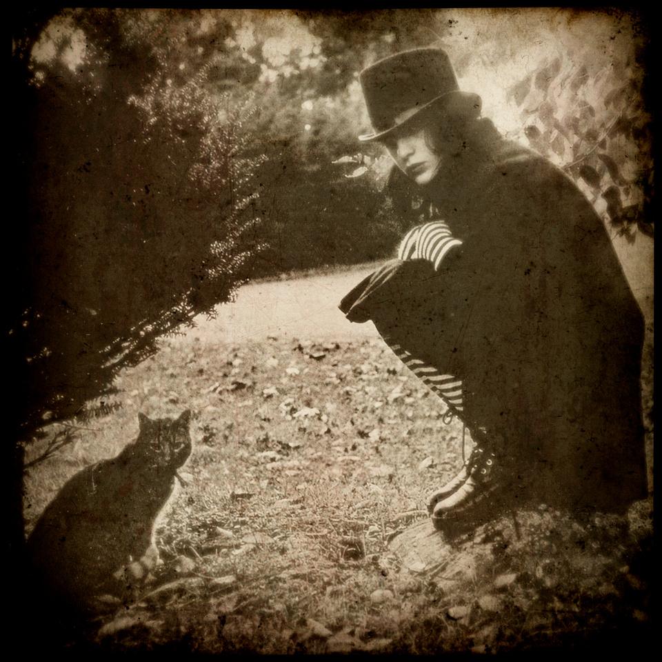 Don't Wake the Scarecrow - 2009-2011
