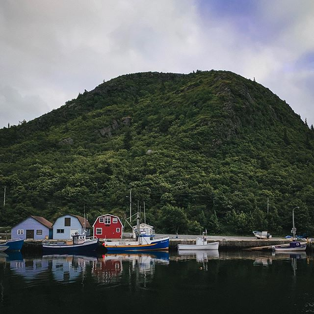 Not only does this little village have gorgeous views of tiny houses & boats set against towering hills & cliffs - it also has a fantastic seafood restaurant and the ice cream shop of your dreams.⁣ ⁣ Guys. Ice cream tacos are a thing 🍦🌮(!!)⁣ ⁣ #nrthwrd #claimthenorth #earnyourrest #atlanticcanada #explorenfld #explorenewfoundland #explorecanada #explorenl #newfoundland #travelcanada #adventure_culture #fishingvillage #eastcoast #exploreeast #eastcoastcreatives #canada_gram #canada🍁 #travelguide #sharecangeo #cangeotravel #cbcnl