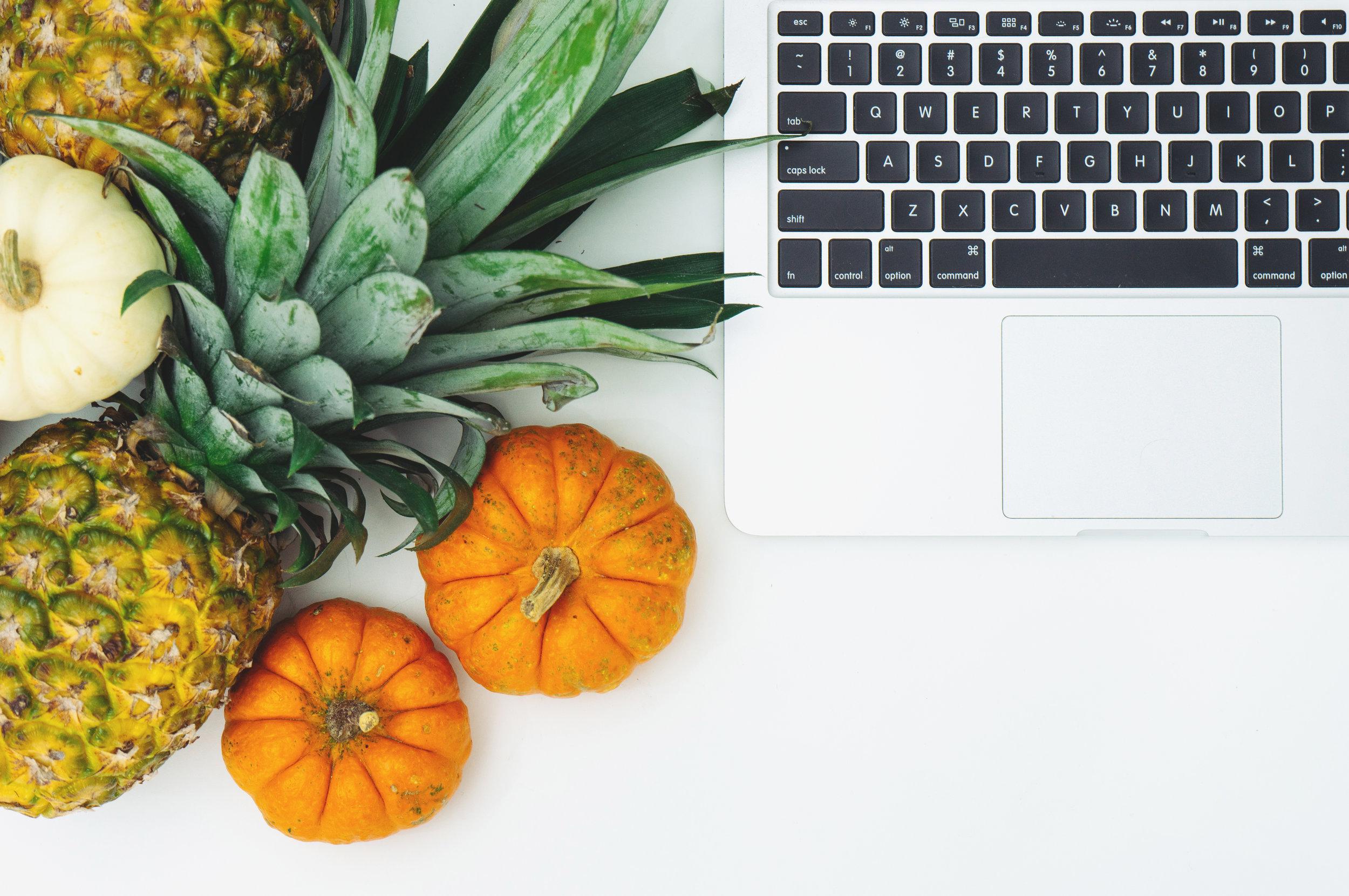 sprout 2018 - participate
