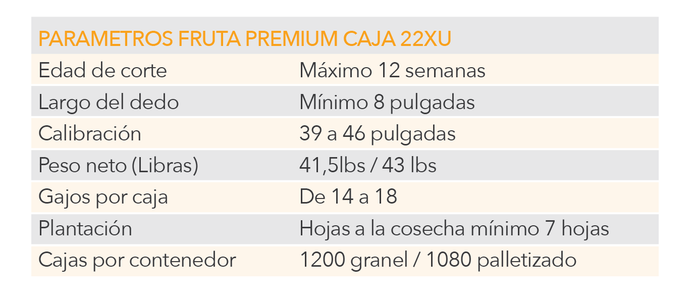 Cuadro1-01.png