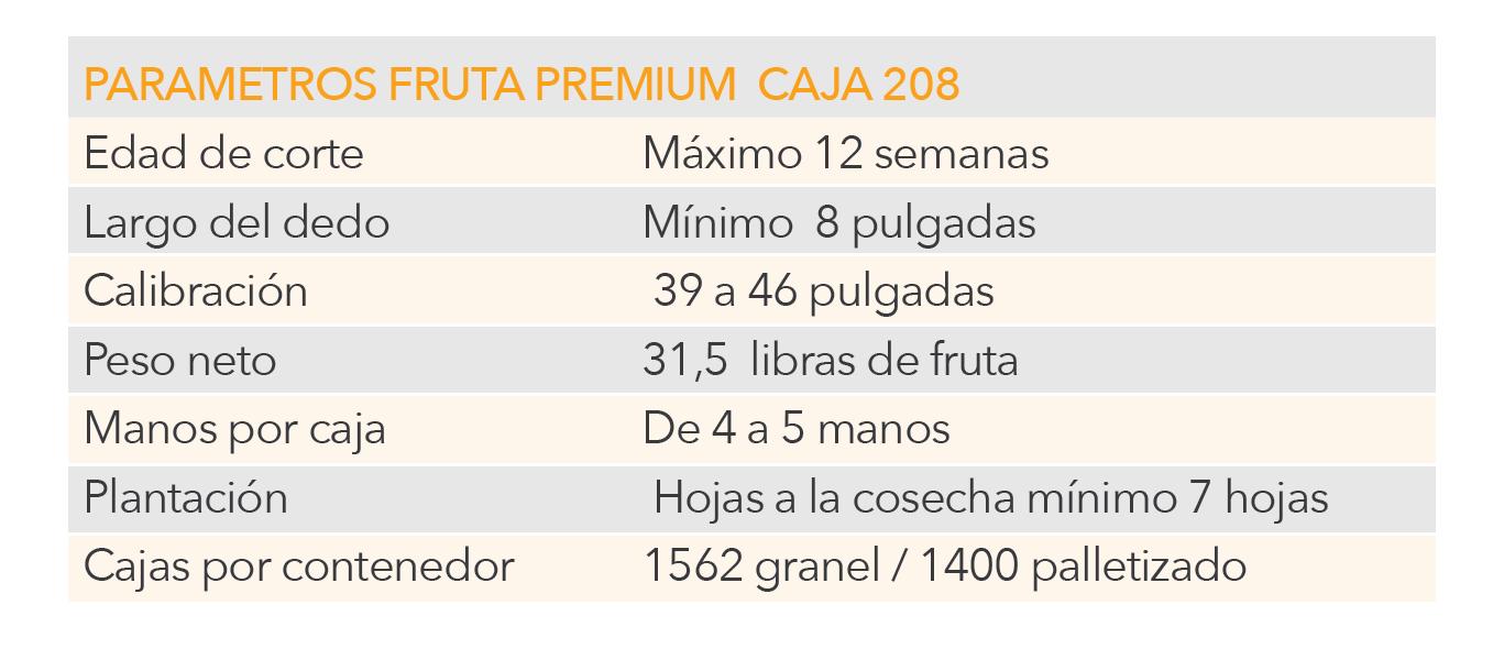 Cuadro1-02.png