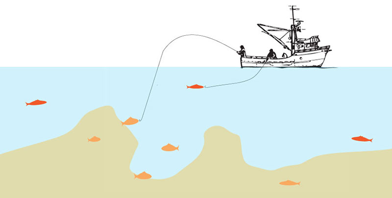 These methods involve a hand line or rod-and-reel, sometimes with more than one hook, that is literally pulled in by hand. There are no engine devices aiding in these techniques of fish retrieval. Rockfish, cod and ling cod are often caught using this method.