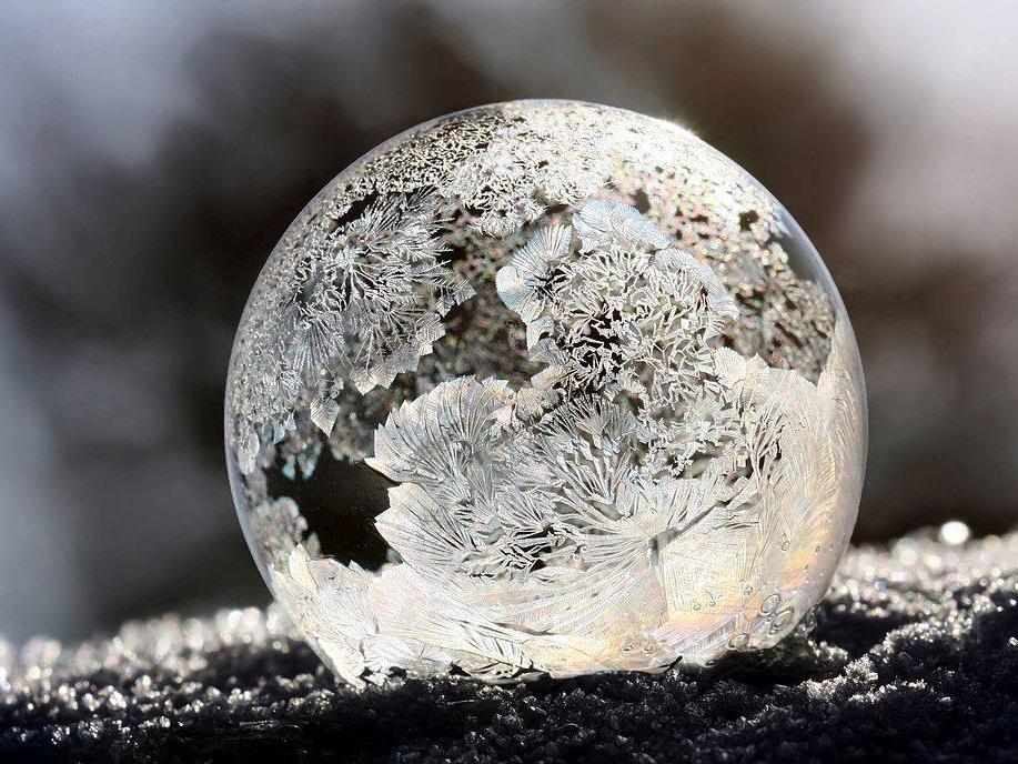 Winter 2016 -