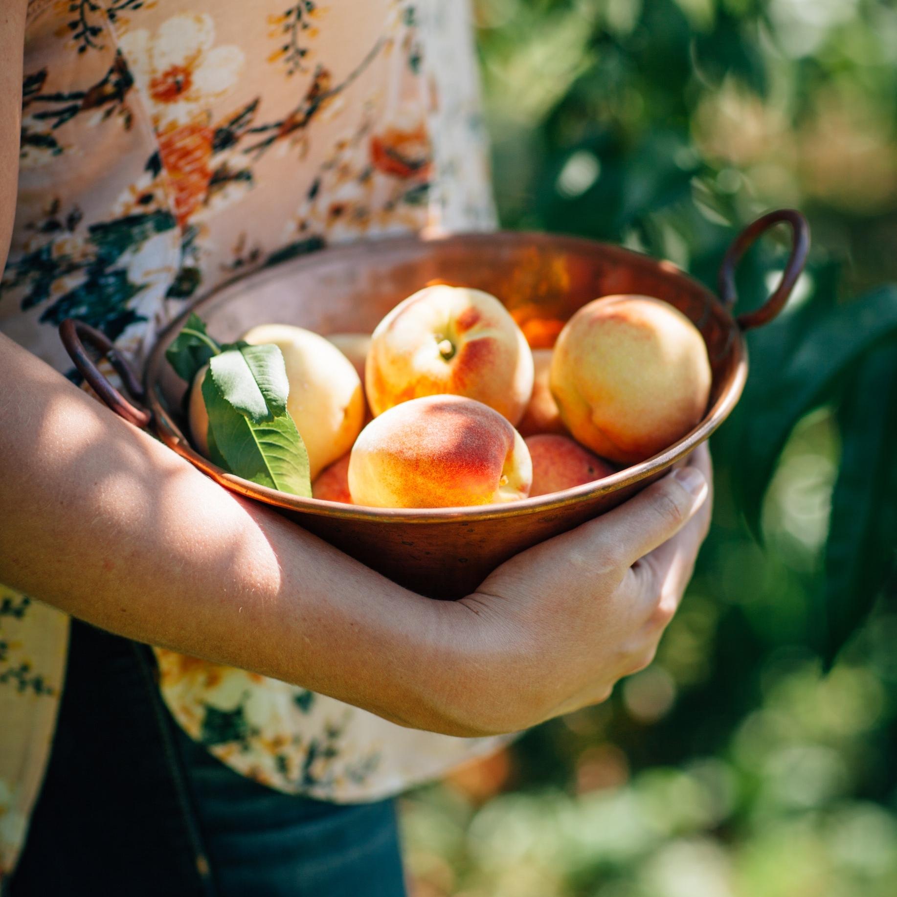 peaches3-makingitrealinc.jpg