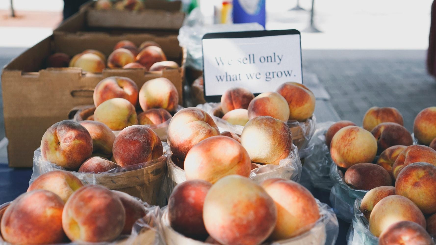 peaches2-makingitrealinc.jpg