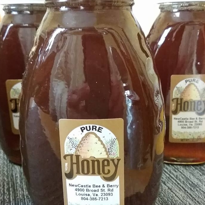 newcastlehoney-makingitrealinc.jpg