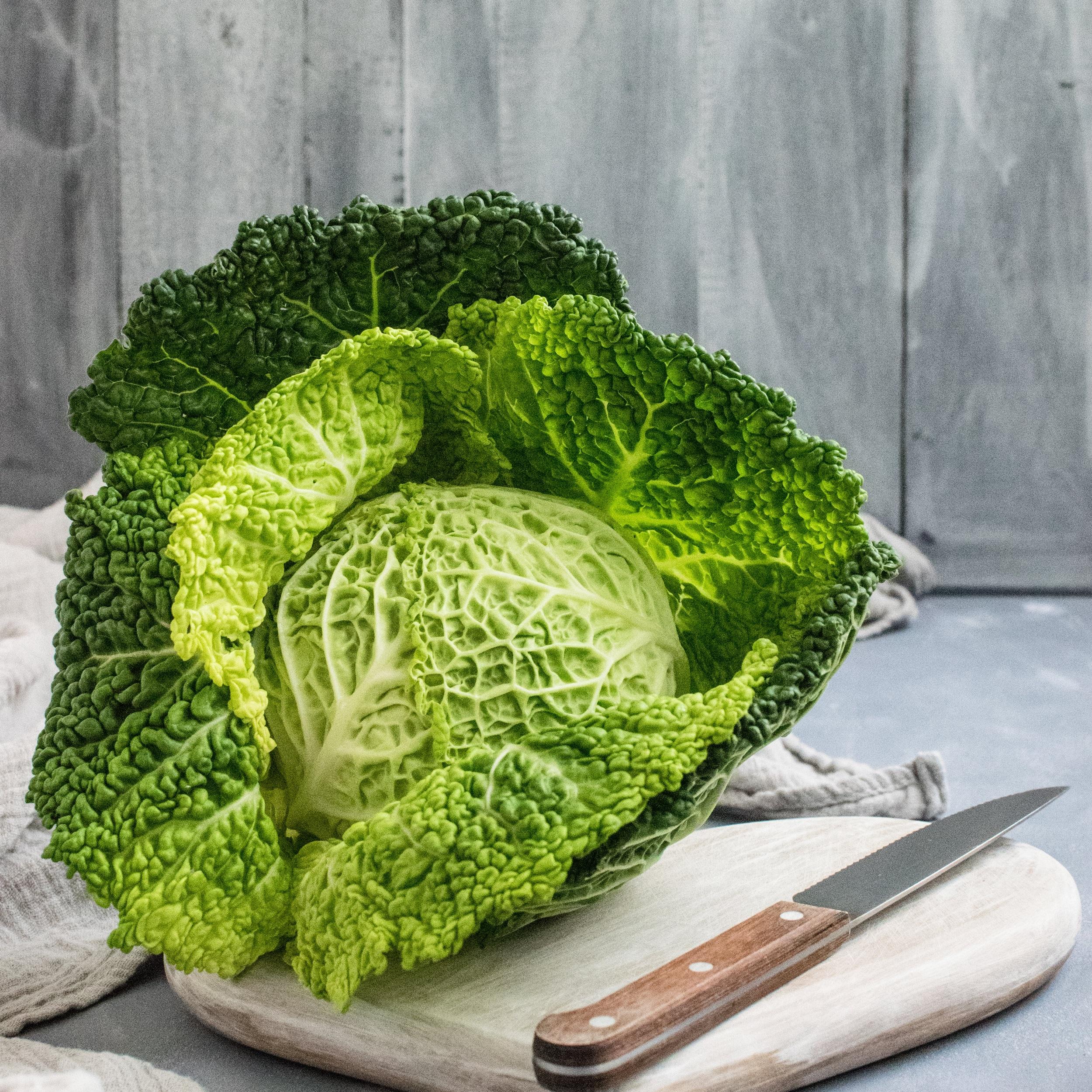 cabbage01-makingitrealinc