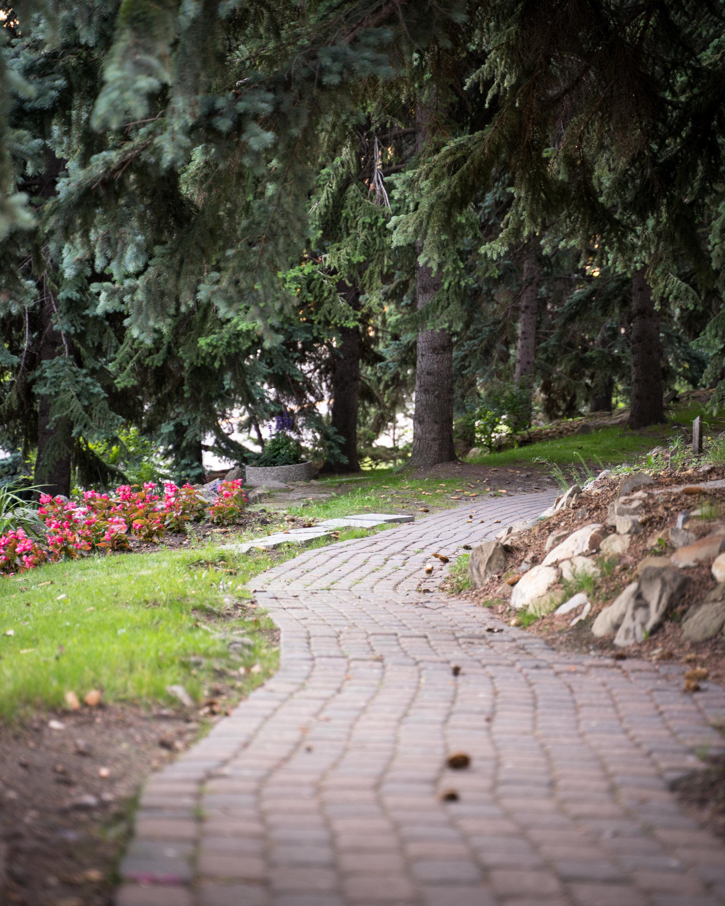 Rock Garden - Riley Park