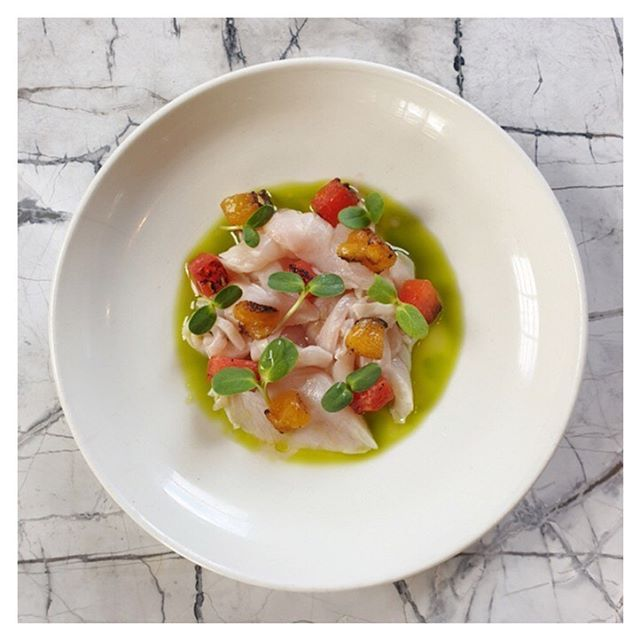 Fresh on the menu today, ceviche with charred watermelon, herb oil, sunflower sprouts.... as delicious as it is beautiful  #aucklandrestaurant #aucklandeats #linecaught #hobsonvillepoint #newness