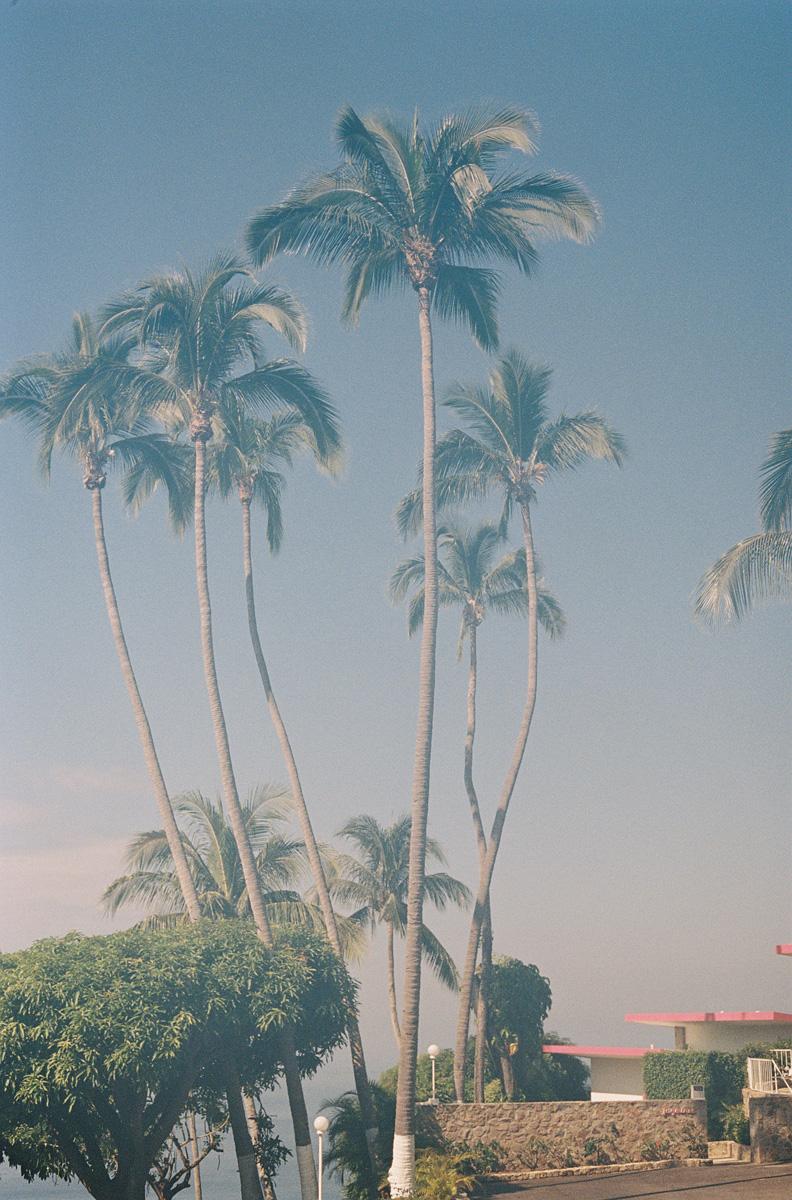 cameron_hammond_lspace_acapulco082.jpg