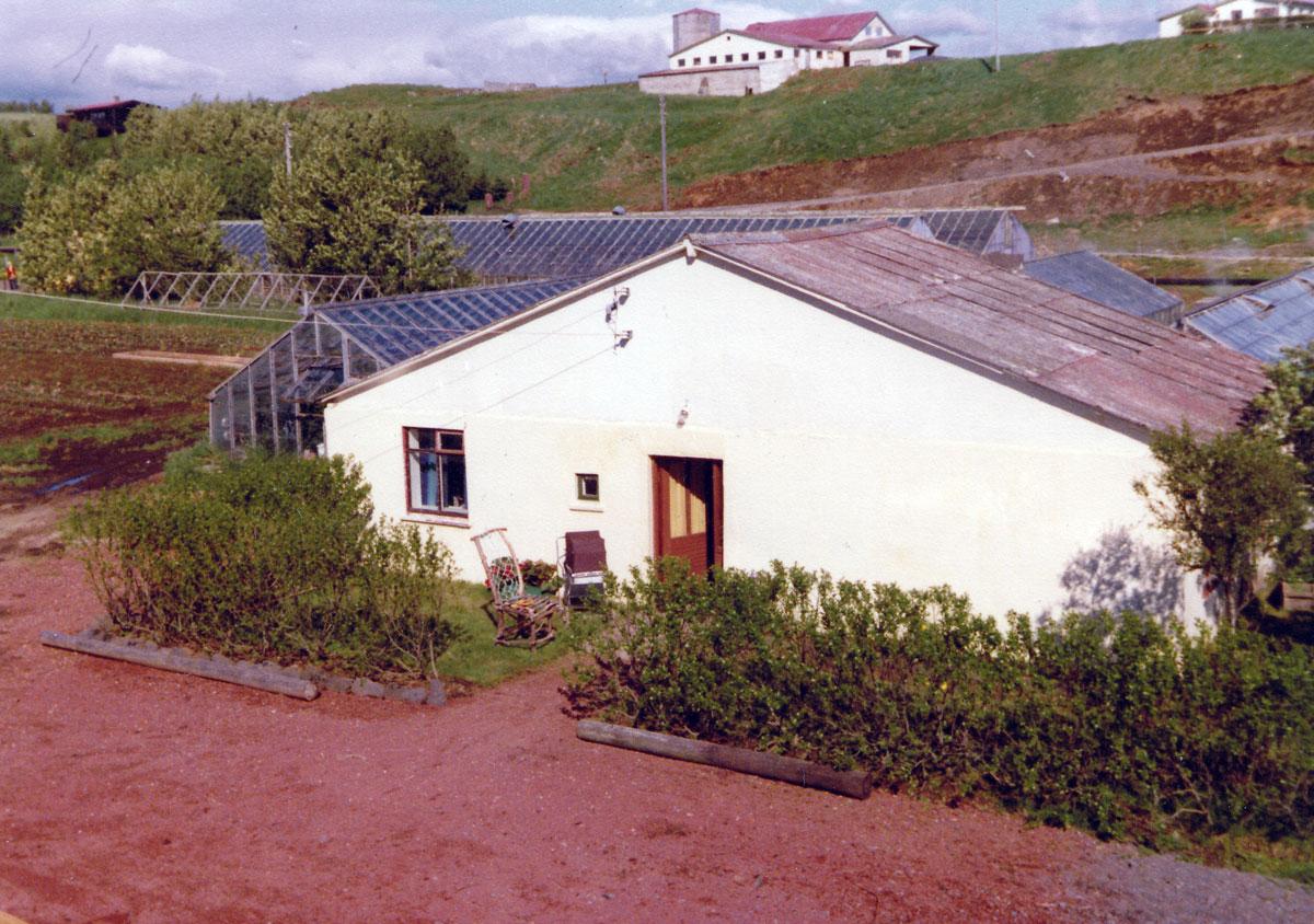 Gamli bærinn í Hveratúni 1977 (mynd: PMS)