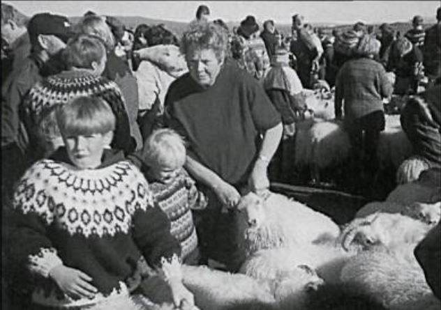 Í réttum 1992  (mynd ur Litla Bergþór)