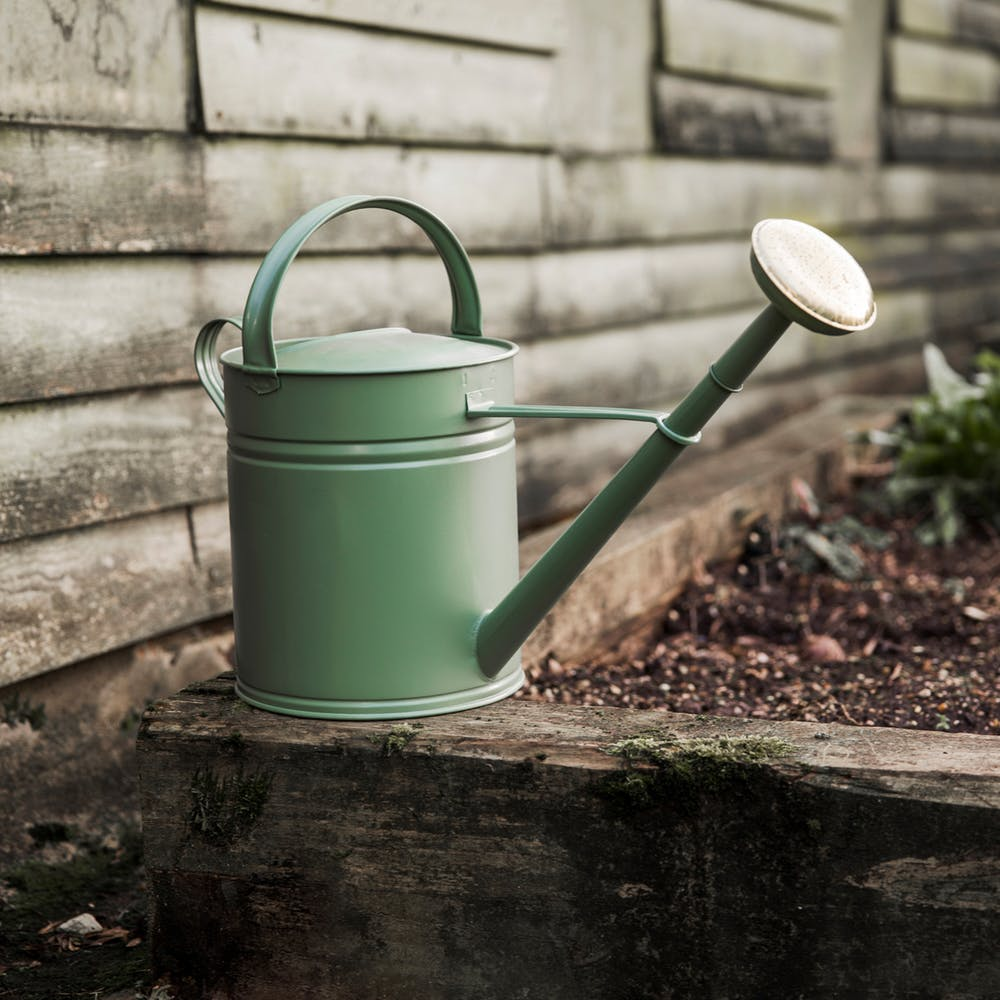 Steel and Brass 10l Watering Can from Garden Trading