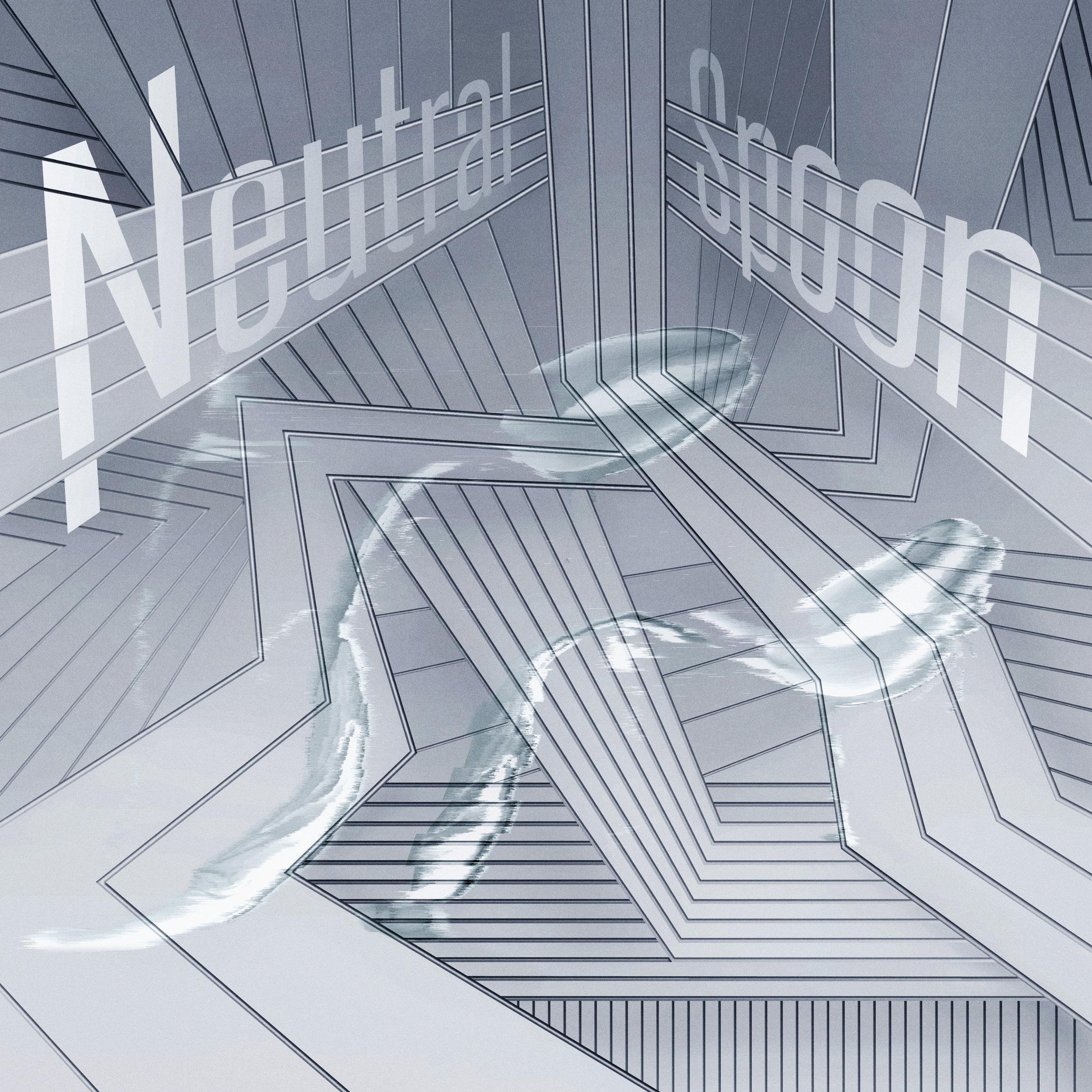 NS-cover.jpg