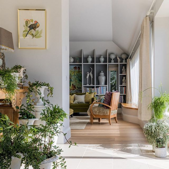 #houseplants #greenvelvetsofa #countrylife #artandinteriors #lightfilledspace #cotswoldlife #cotswoldliving #siobhanloatesinteriors @coatwood_styling @llaianna