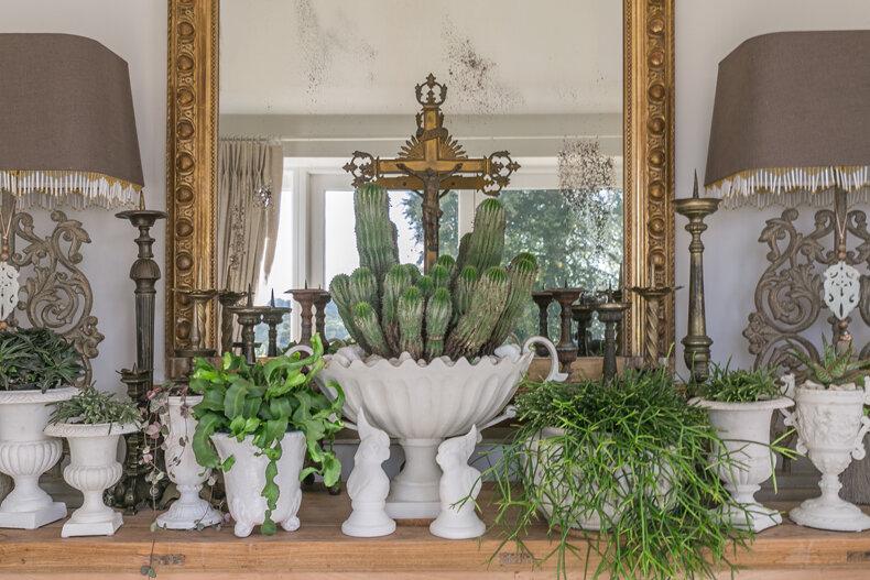 House plants table.jpg