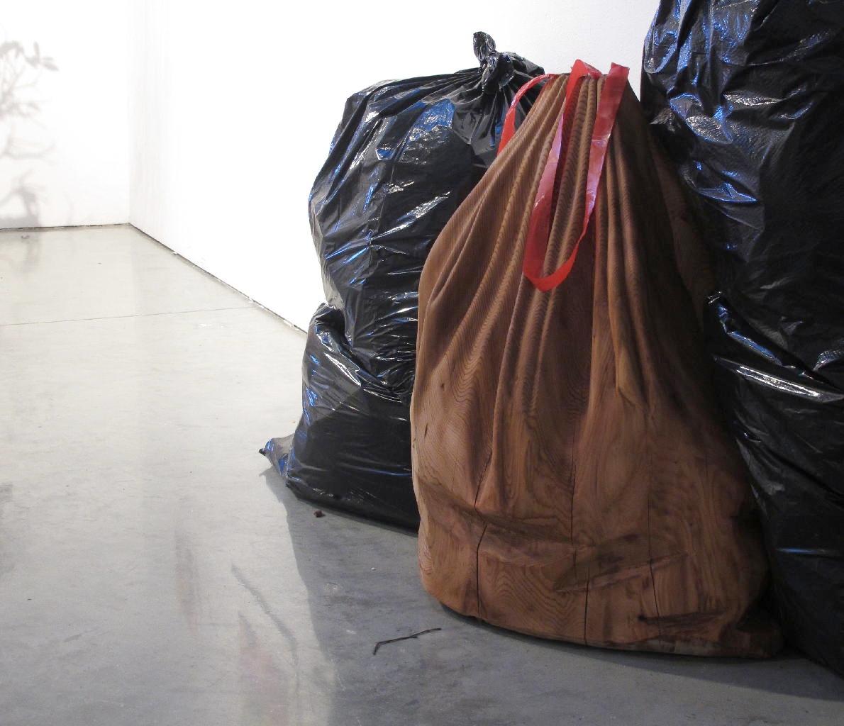 Baggage - Red cedar, plastic - (2011)
