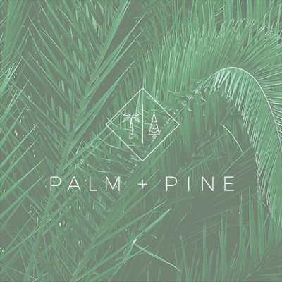 PALM + PINE | Brand Support