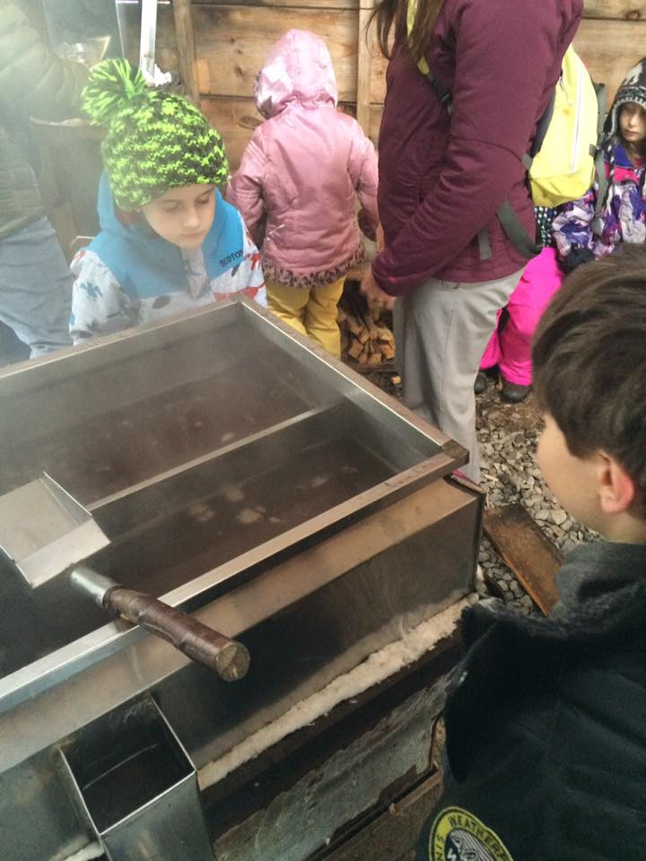 Students watch as maple sap is reduced to maple syrup through evaporation.