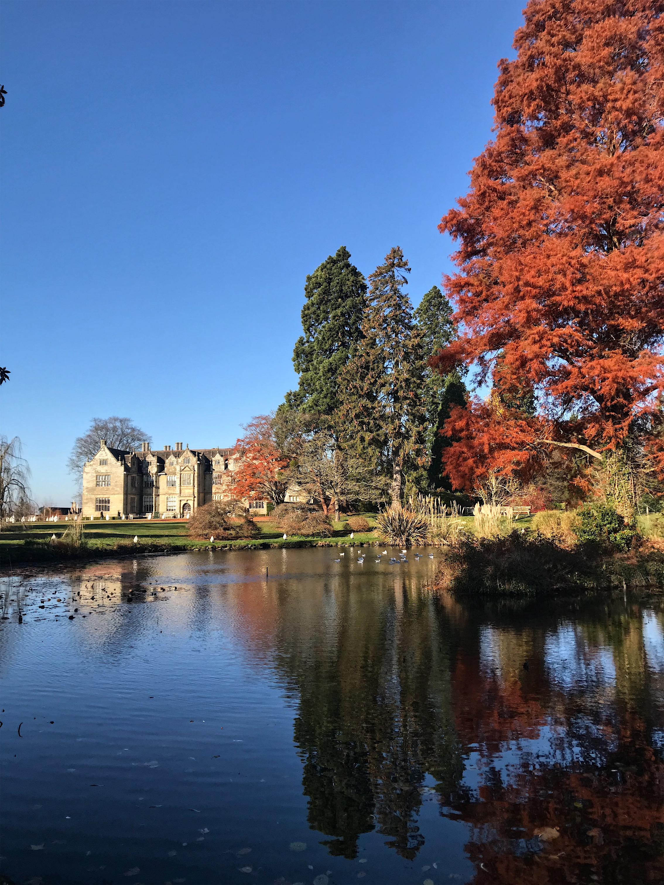 The Beautiful Wakehurst Place - no trees were harmed in the collection of twigs