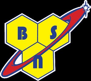 BSN-logo-ACD7D3396F-seeklogo.com-2.png