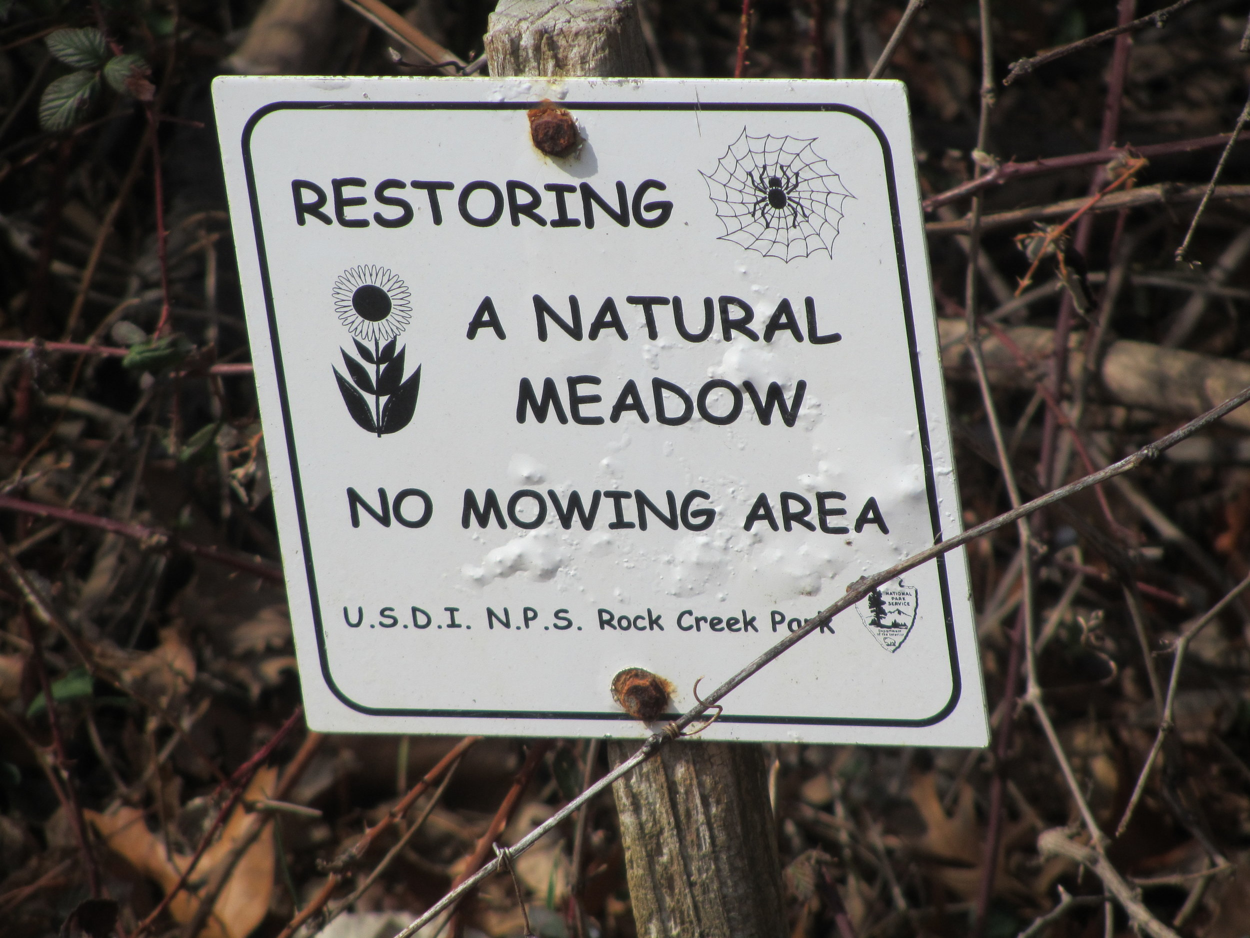 Sign by the wooded area along 1st Pl, NE