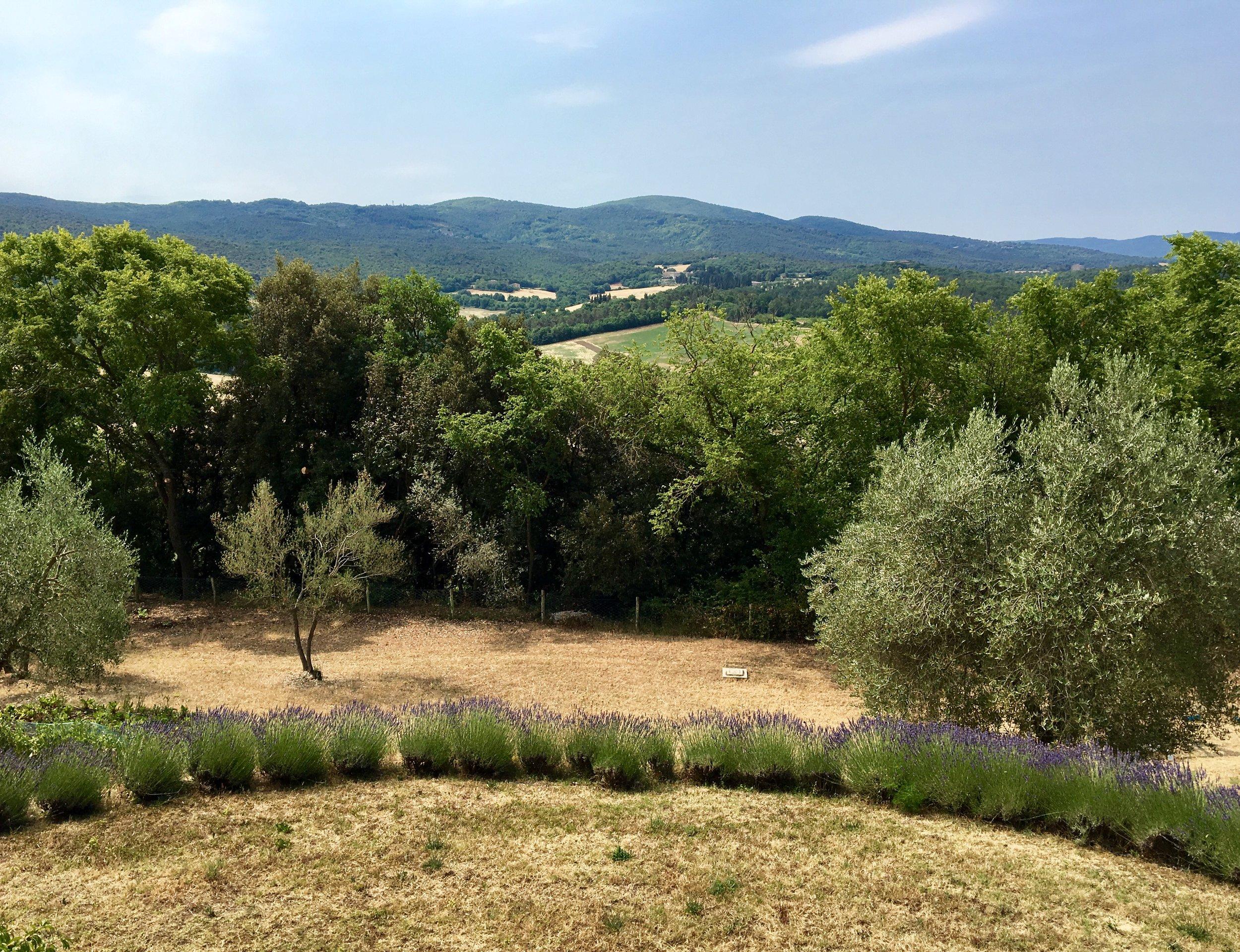 Villa Views.jpg