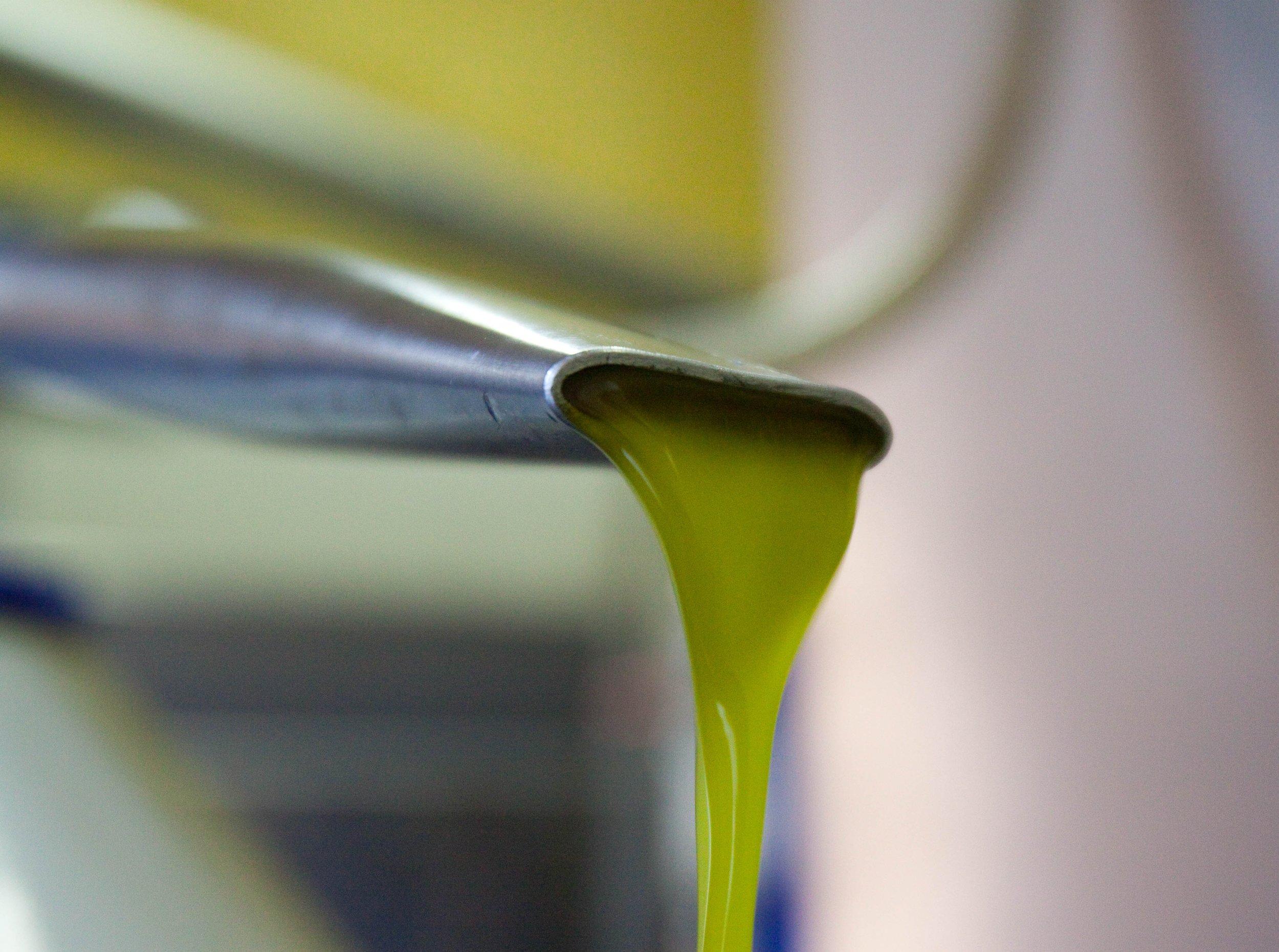 Oil 2009.JPG