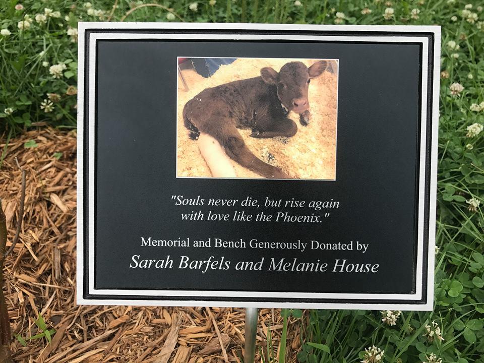 phoenix plaque.jpg