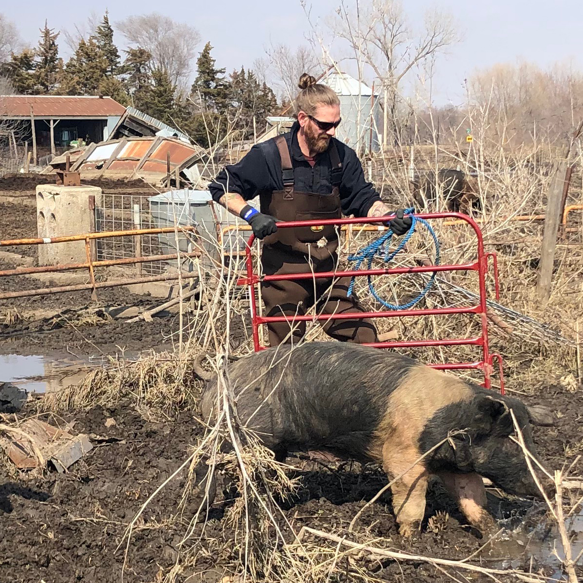 Co-founder, Jered Camp, assists with the rescue of a pig named Love during the floods in Nebraska.
