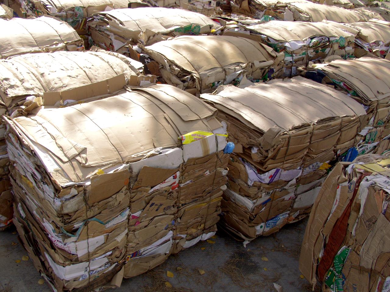 Cardboard-Bales.jpg