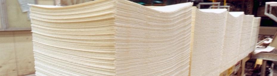 Pulp paper_2.jpg