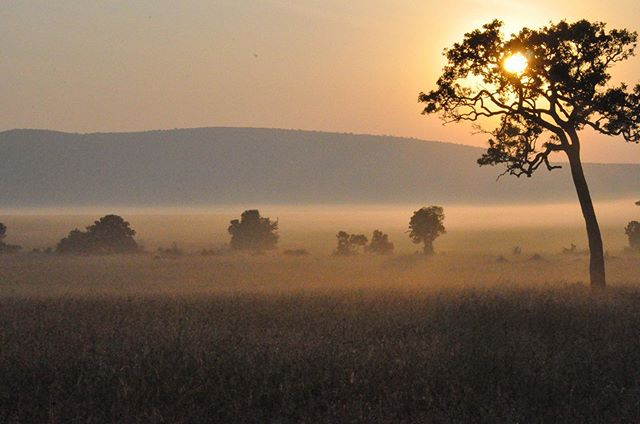 """I never knew of a morning in Africa when I woke up and was not happy."" - Ernest Hemingway"