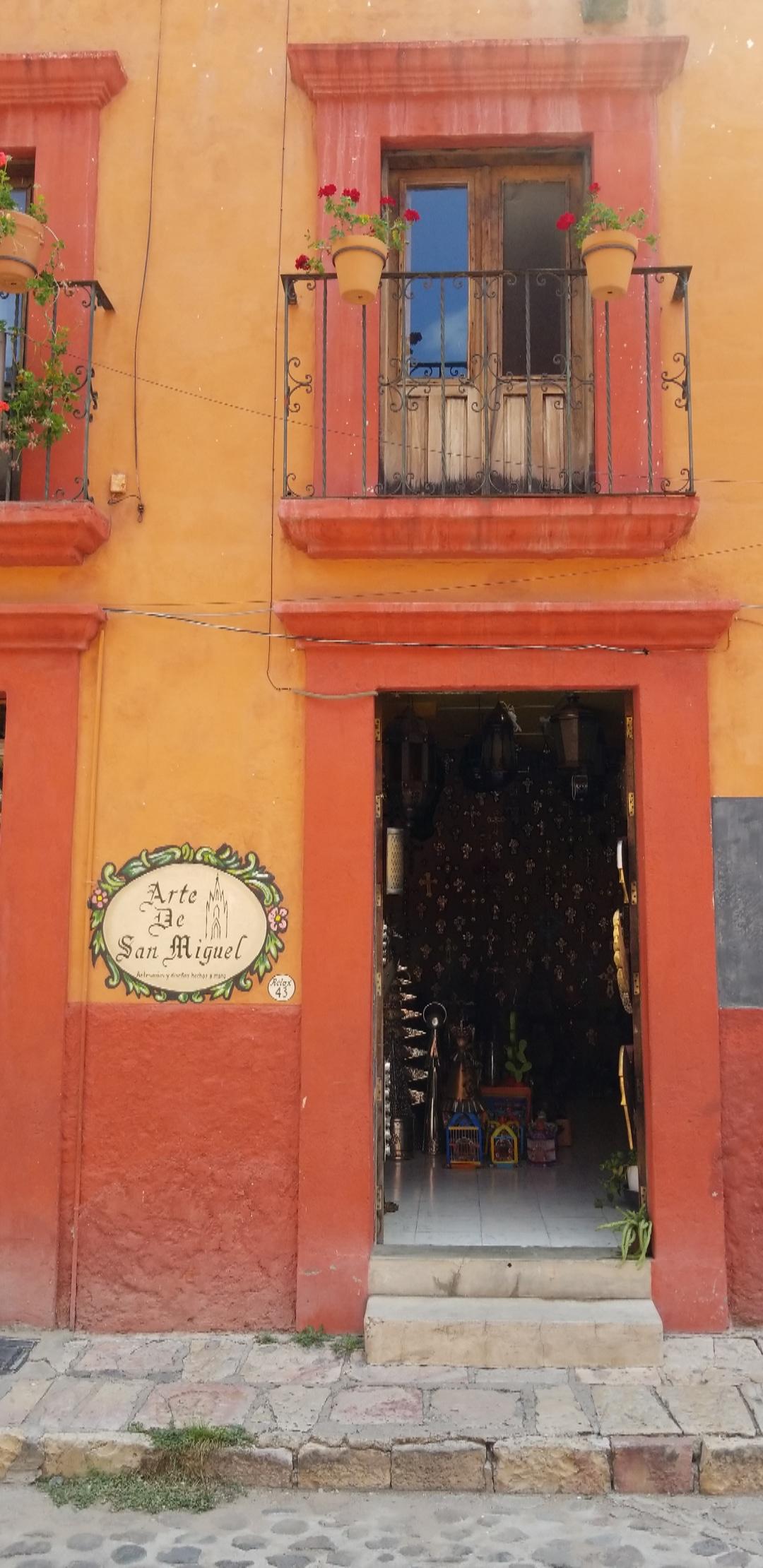 My next door neighbor in San Miguel de Allende.