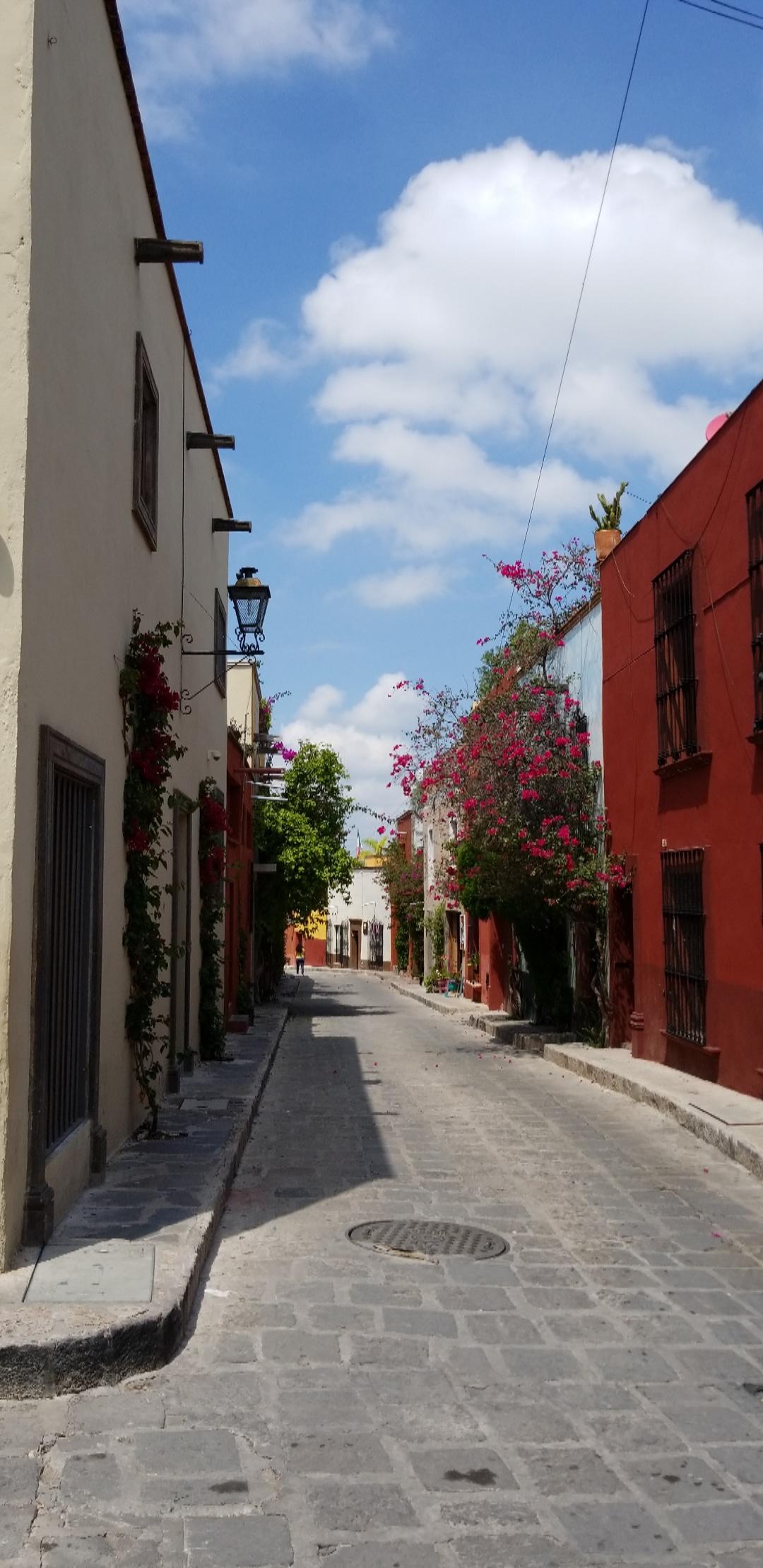 50 shades of color around every corner in San Miguel de Allende.