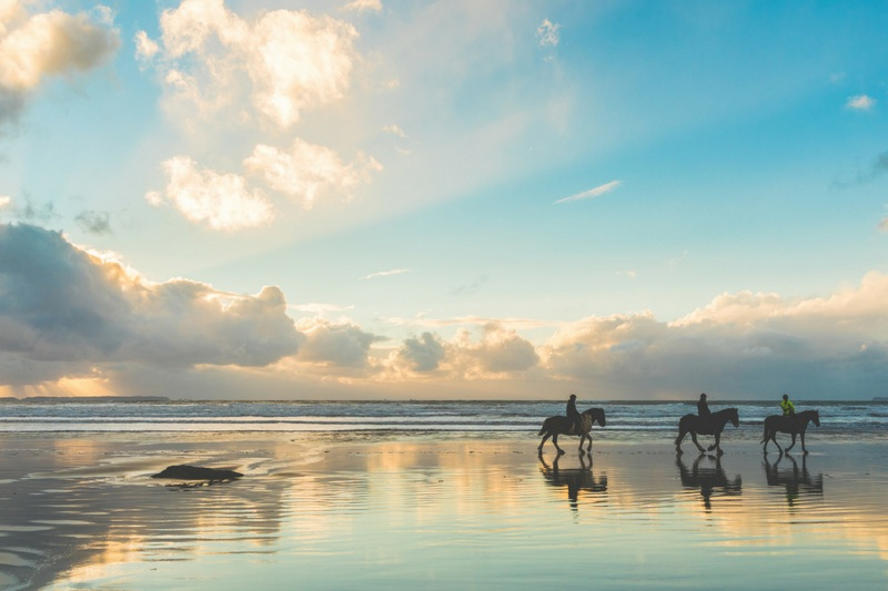 horseback riding - Let the spirit of Horse share how living from feminine wisdom can be powerful and healing